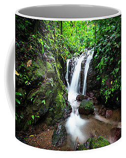 Pura Vida Waterfall Horizontal Coffee Mug