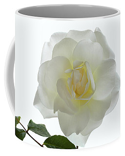 Pure White Rose Coffee Mug by Terence Davis