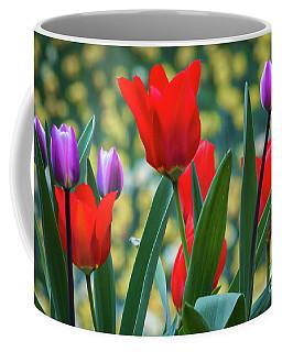 Purple And Red Tulips Coffee Mug