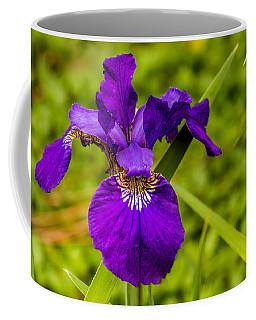 Purple Beauty Coffee Mug