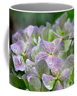 Purple Beauty Coffee Mug