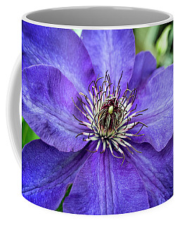 Coffee Mug featuring the photograph Purple Clematis by Chrystal Mimbs
