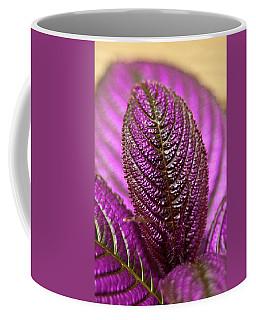 Coffee Mug featuring the photograph Purple Coleus by Carolyn Marshall