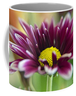 Purple Daisy Coffee Mug