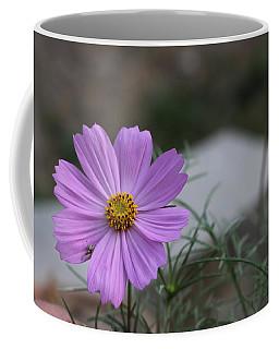 Purple Cosmos Coffee Mug by Khalid Saeed