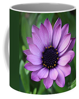 Purple Daisy Square Coffee Mug