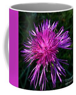 Purple Dandelions 4 Coffee Mug