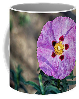 Coffee Mug featuring the photograph Purple Rockrose by Alison Frank
