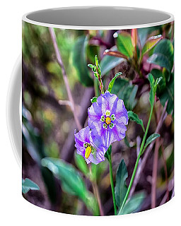 Coffee Mug featuring the photograph Purple Flower Family by Alison Frank