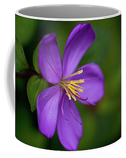 Purple Flower Macro Coffee Mug