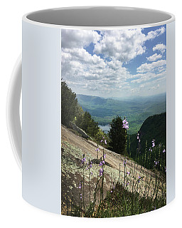 Coffee Mug featuring the photograph Purple Flowers At Table Rock Overlook by Kelly Hazel