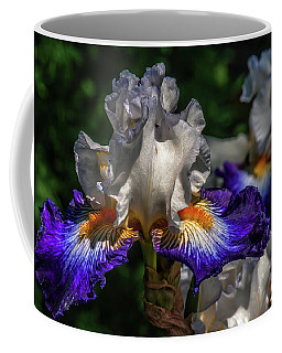 Purple Fringed White Iris Coffee Mug by Jim Moore