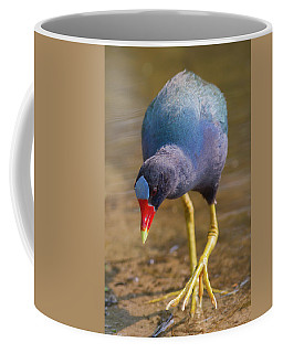 Purple Gallinule Bigfoot Coffee Mug