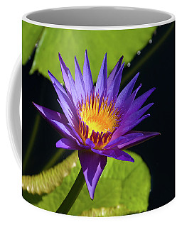 Coffee Mug featuring the photograph Purple Gold by Steve Stuller