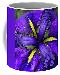 Purple Iris Centre Coffee Mug