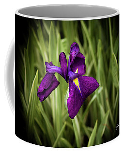 Coffee Mug featuring the photograph Purple Japanese Iris by Joann Copeland-Paul
