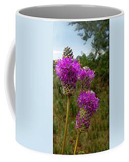 Purple Prairie Clover Coffee Mug