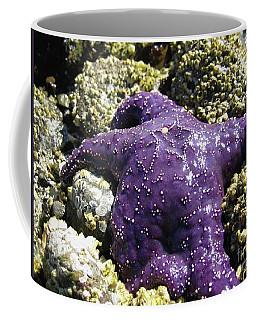 Purple Star Fish Coffee Mug
