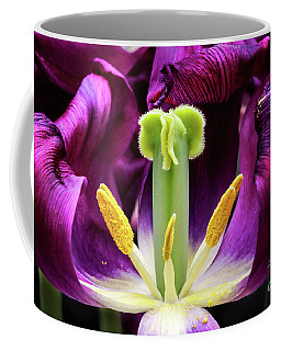 Coffee Mug featuring the photograph Purple Tulip Macro by Darleen Stry