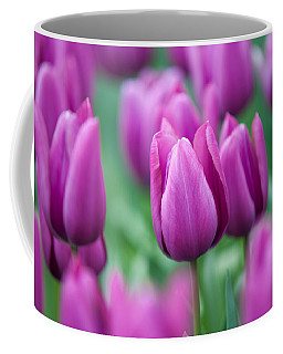 Purple Tulips Of Keukenhof Coffee Mug