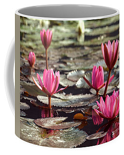 Purple Water Lillies Coffee Mug
