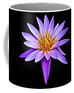 Purple Waterlily With Golden Heart Coffee Mug