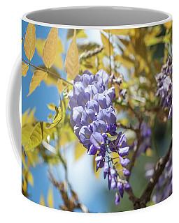 Coffee Mug featuring the photograph Purple Wisteria Flowers by Jenny Rainbow