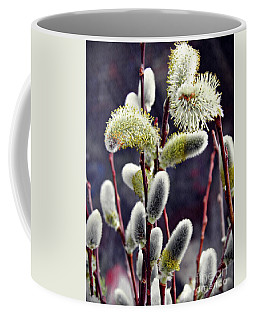Pussy Willow Spring  Coffee Mug