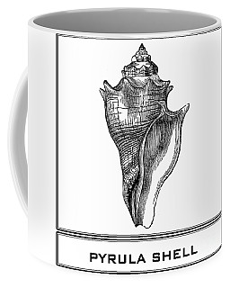 Pyrula Shell Coffee Mug