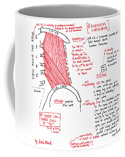 Quadratus Lumborum Coffee Mug