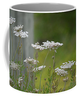 Queen Anne Lace Wildflowers Coffee Mug