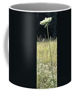 Coffee Mug featuring the photograph Queen Anne by Melinda Blackman
