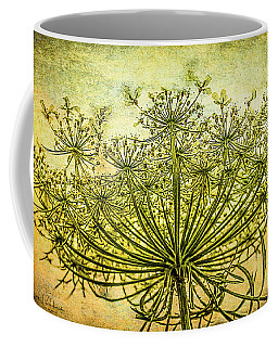 Queen Anne's Lace At Sunrise Coffee Mug