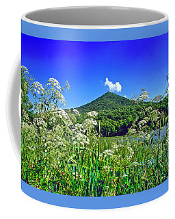 Queen Anne's Lace, Peaks Of Otter  Coffee Mug