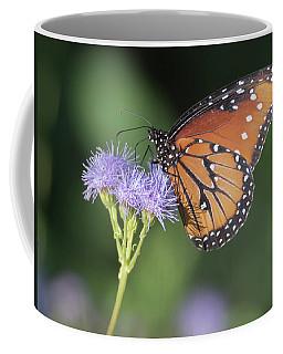 Queen Butterfly 7474-101017-1cr Coffee Mug