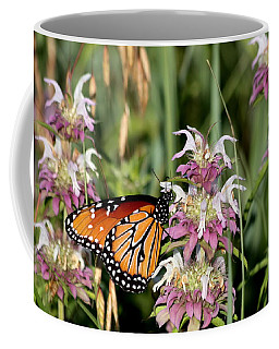 Coffee Mug featuring the photograph Queen Butterfly And Purple Wildflowers by Sheila Brown