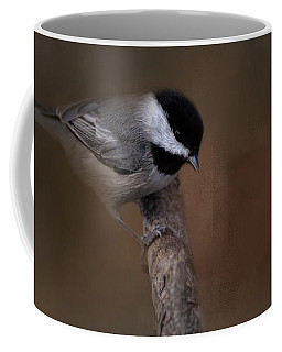Quicksilver 2 Coffee Mug