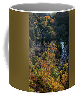 Quiet Canyon Coffee Mug