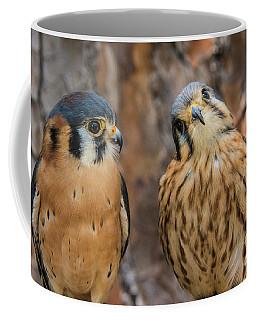 Quizzical Kestrals Coffee Mug