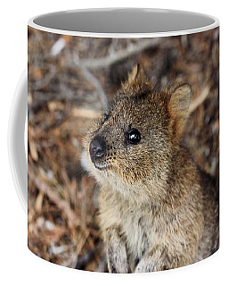 Quokka Coffee Mug