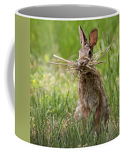 Rabbit Collector Square Coffee Mug by Terry DeLuco