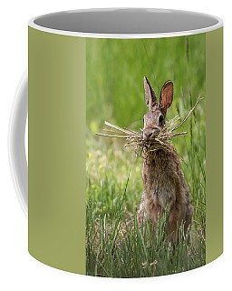 Rabbit Collector  Coffee Mug by Terry DeLuco