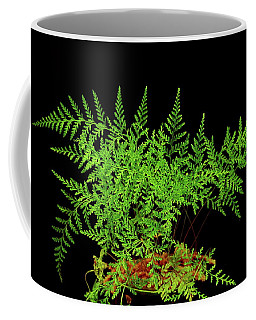 Rabbit Foot Fern Coffee Mug