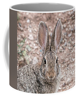 Rabbit Stare Coffee Mug
