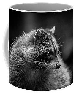 Raccoon 3 Coffee Mug