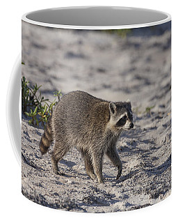 Raccoon On The Beach Coffee Mug