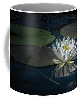 Radiance II Coffee Mug