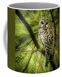 Radiating Barred Owl Coffee Mug