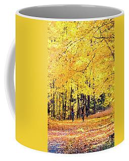 Autumn Glory On The Rail Trail Coffee Mug
