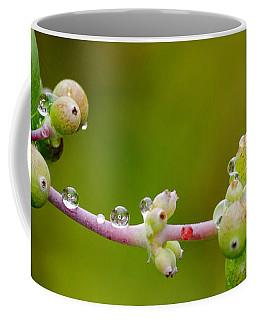 Rain Drops On A Stem Coffee Mug